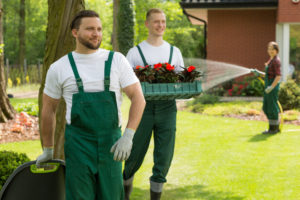 landscaping contractors - lawn care